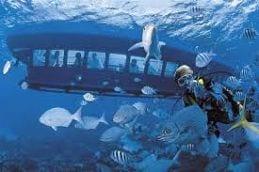 Curaçao vakantie Sea Aquarium