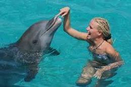 Curaçao vakantie dolfijnen