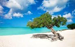 Curaçao vakantie natuur