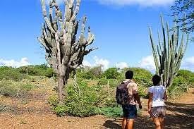 Bonaire vakantie wandelen